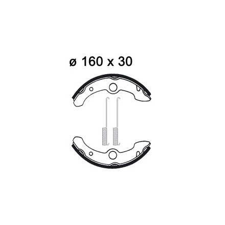 Machoires de freins AP RACING LMS887