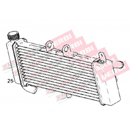 Radiateur Derbi GPR 50 2009-2013, Aprilia RS4 50/125 2011