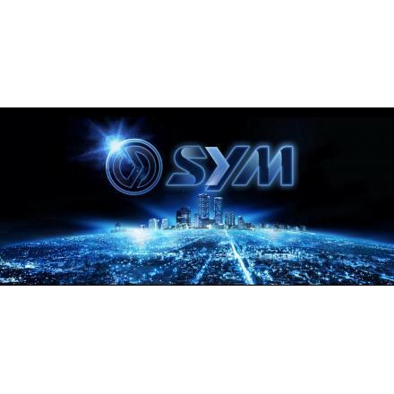 Kit entretien Sym 125 GTS EFI / 125 Joymax